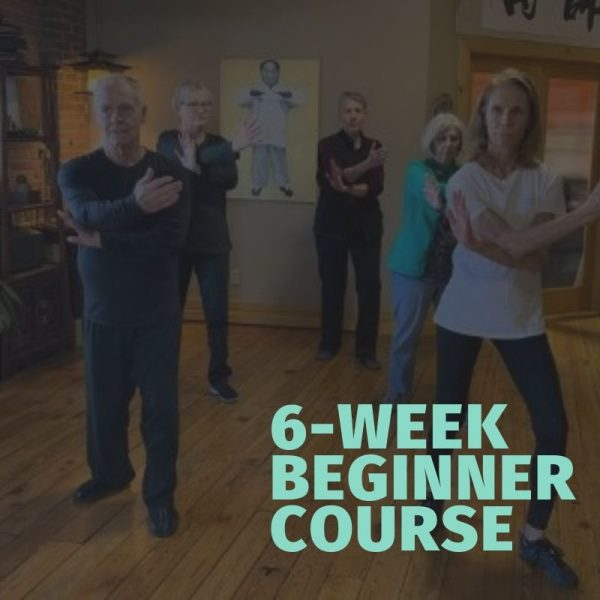 tai chi beginner course